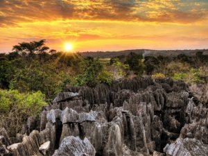 Μαδαγασκάρη-ταξίδι-diontours.com