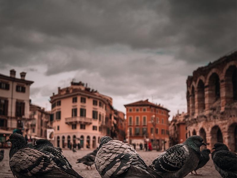 Βερόνα-Ιταλία-ταξίδι-diontours.com